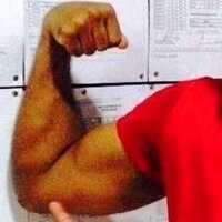 Biceps, Triceps & Forearms