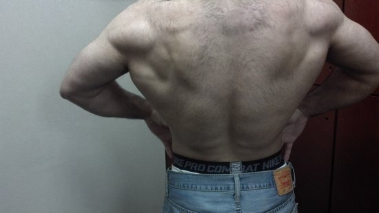 hairy back forum