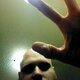 TH3SHR3DD3R's Avatar